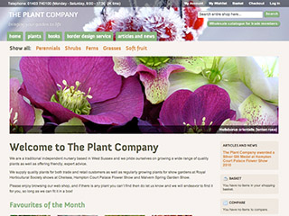 The Plant Company