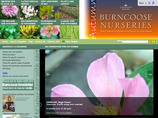 Burncoose Nurseries