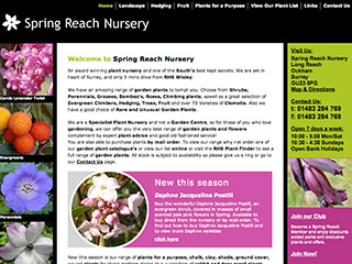 Spring Reach Nursery
