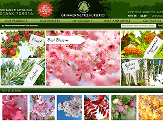 Ornamental Tree Nurseries Ltd